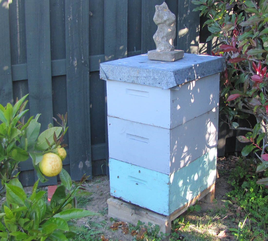 Bee Hive Lease